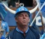 Blue Bull Fan