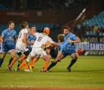 cheetahs vs bulls by bruce taylor