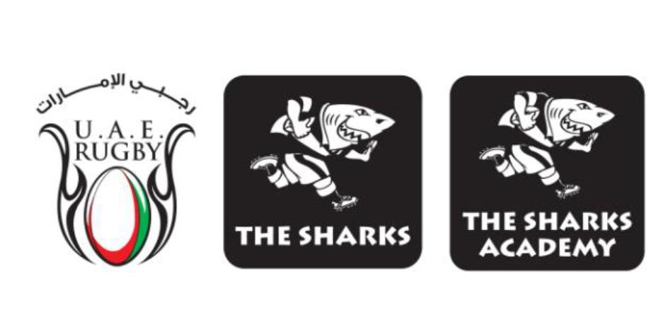 Set Shark Mascot Rugby Team Vector   shutterstockcom