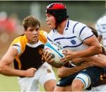 Hoerskool Menlopark Rugby 2013 -  Justin Meintjies (flank)
