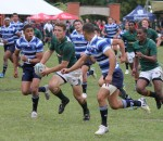 Glenwood High School vs Paarl Boys High at Wildeklawer 2013- by Cyndi Gilbey