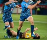 JJ Engelbrecht sprinting to the line having bumped off Conrad Smith in photo by Ruby Wolff