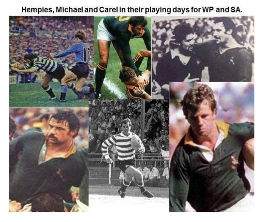 Hempies, Michael & Carel in their playing days for WP & Springboks