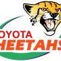 Toyota Cheetahs Logo