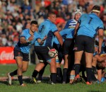 Embrose Papier of Blue Bulls during the match between the Blue Bulls and Western Province