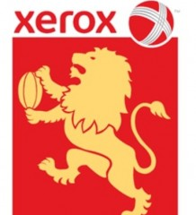 xerox_lions