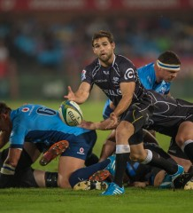 LOFTUS VERSFELD, SOUTH AFRICA - MARCH 22: Cobus Reinach from the Sharks in action during the Super Rugby match between the Vodacom Blue Bulls  and the Cell C Sharks played at Loftus Versfeld, Pretoria, South Africa. (Photo by Anton Geyser)