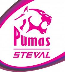 Steval Pumas logo
