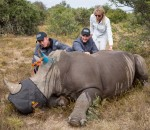 Bealey Mitchell, Stuart Broad and Steven Finn. Rhino experience with Investec Rhino Lifeline in the Eastern Cape, South Africa.