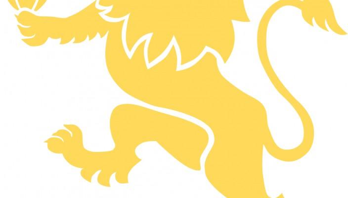 LIONS_Xerox Logo_2016 04