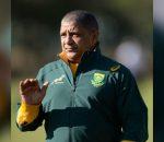 Allister Coetzee Springbok Coach