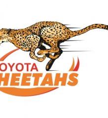 Cheetahs Superrugby 2016  logo