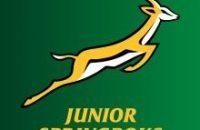 junior springbok