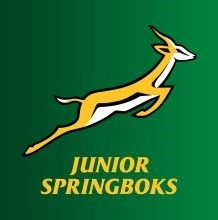 junior springbok
