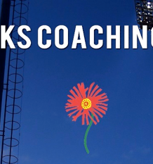 Blue Bulls and TuksRugby's international Coaching Summit